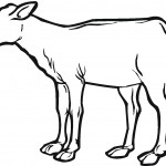 Cow Coloring Pages for Kids Image