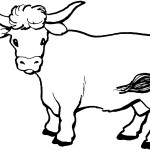 Cow Coloring Pages for Kids Picture