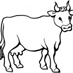 Cow Coloring Pages for Kids Pictures