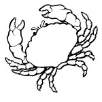 Crab Coloring Page Images