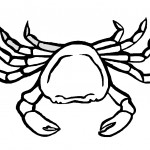 Crab Coloring Page Picture