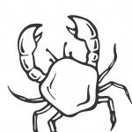 Crab Coloring Pages Image