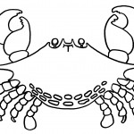 Crab Coloring Pages Images