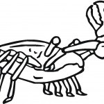 Crab Coloring Pages for Kids Photo