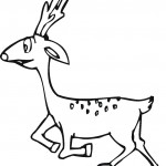 Deer Coloring Page for Kids Images