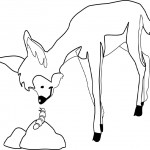 Deer Coloring Page for Kids Picture