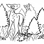Deer Coloring Pages for Kids Image