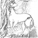 Deer Coloring Pages for Kids Picture