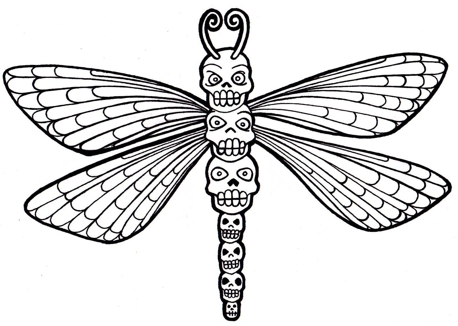 dragonfly pictures coloring pages - photo#25