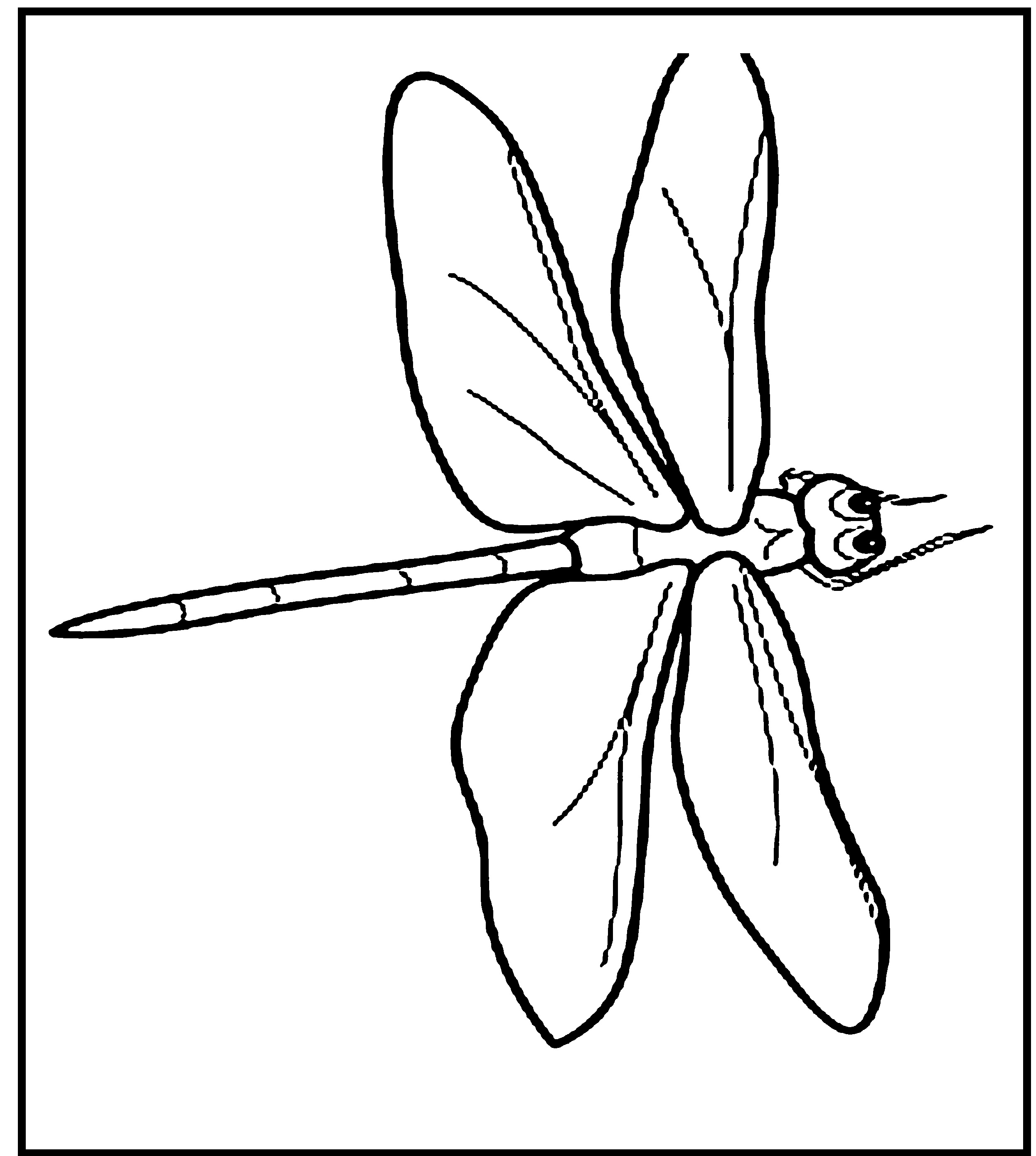 Free Printable Dragonfly Coloring Pages For Kids | Animal ...