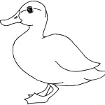Duck Coloring Pages Images
