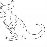 Kangaroo Coloring Page Photo