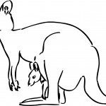Kangaroo Coloring Page Picture