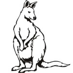 Kangaroo Coloring Pages Images