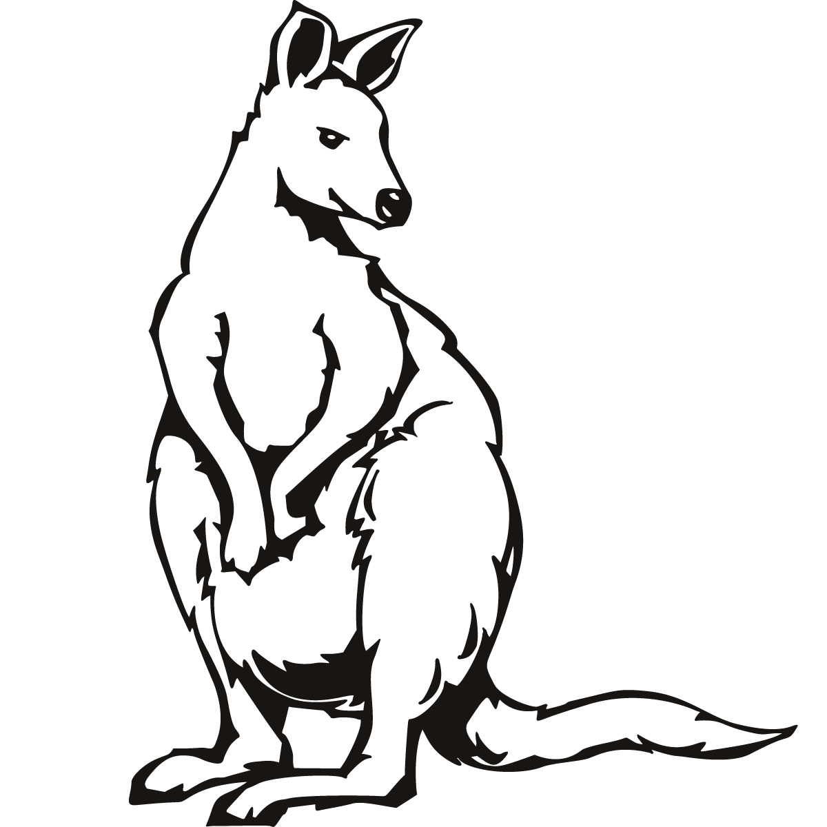 free printable kangaroo coloring pages for kids animal place