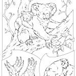 Koala Coloring Page Image