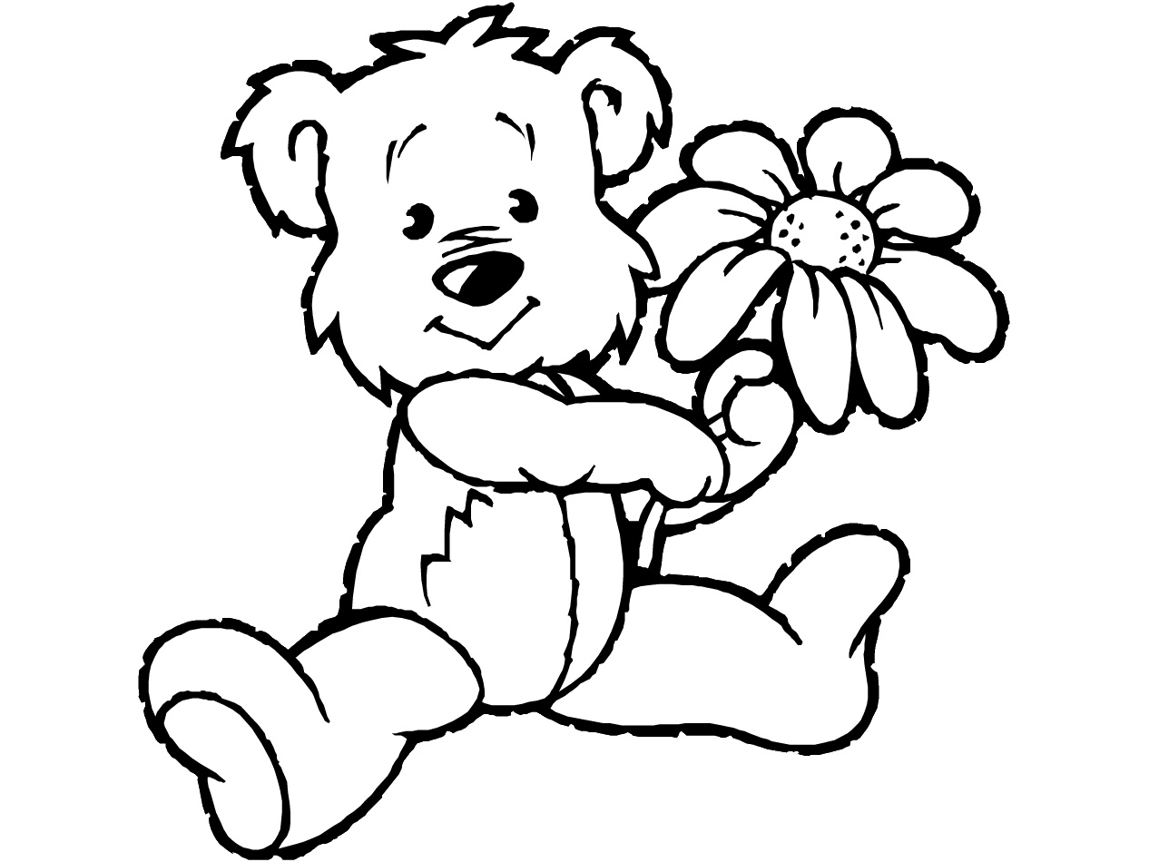 koala coloring page picture