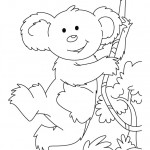 Koala Coloring Page for Kids Photo