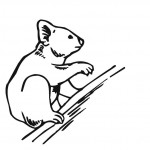 Koala Coloring Page for Kids Pictures