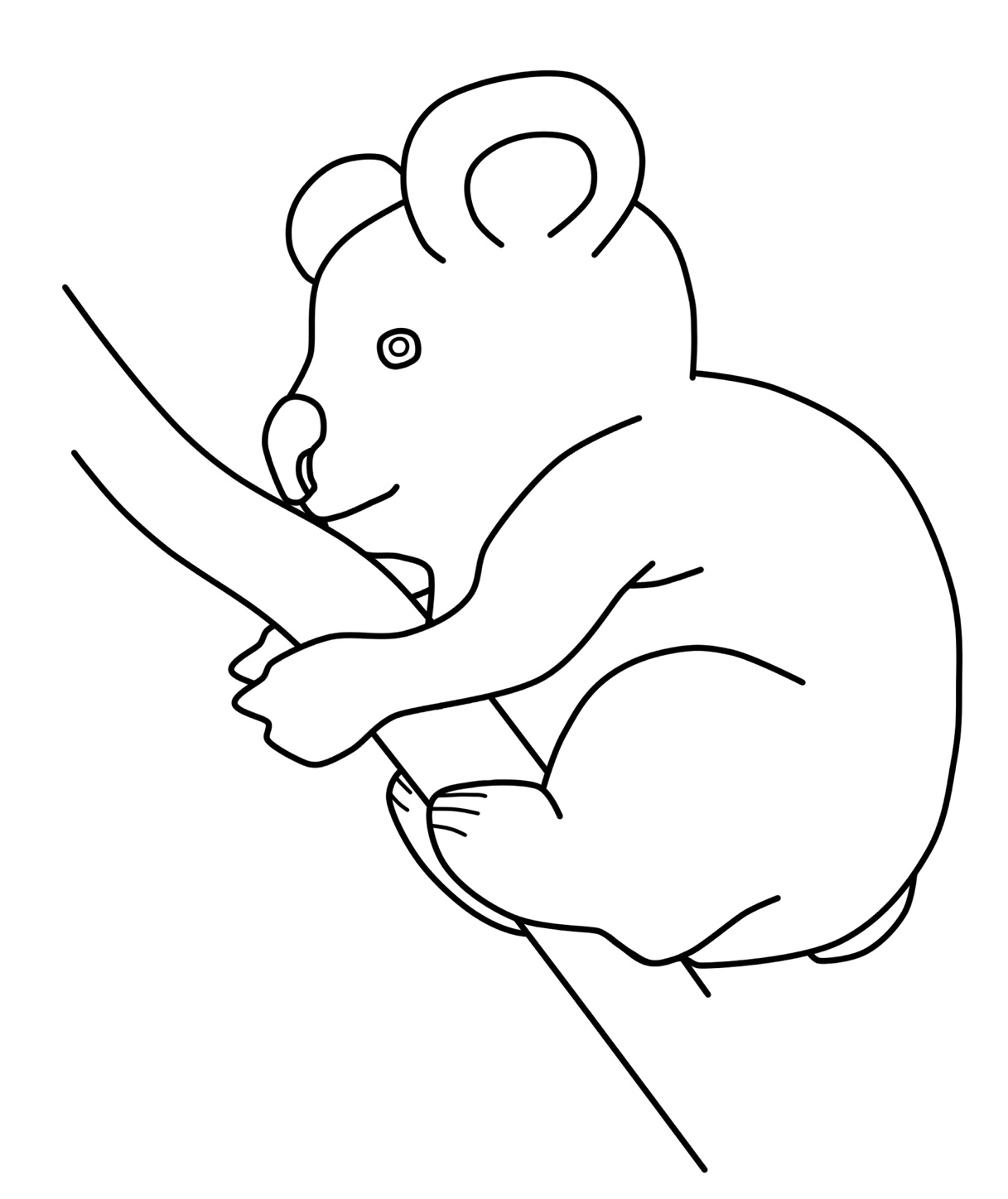 Free Printable Koala Coloring Pages For Kids | Animal Place