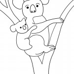 Koala Coloring Pages Image