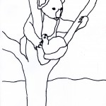 Koala Coloring Pages Photo