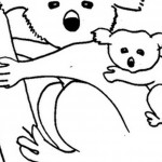 Koala Coloring Pages Picture