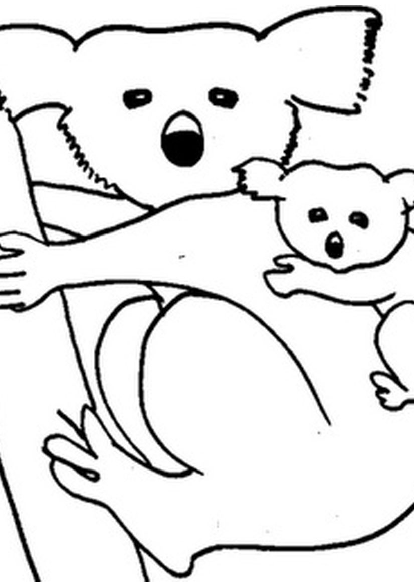 Printable coloring pages koala - Free Printable Koala Coloring Pages For Kids