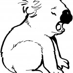 Koala Coloring Pages for Kids Photo