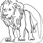 Lion Coloring Page Images