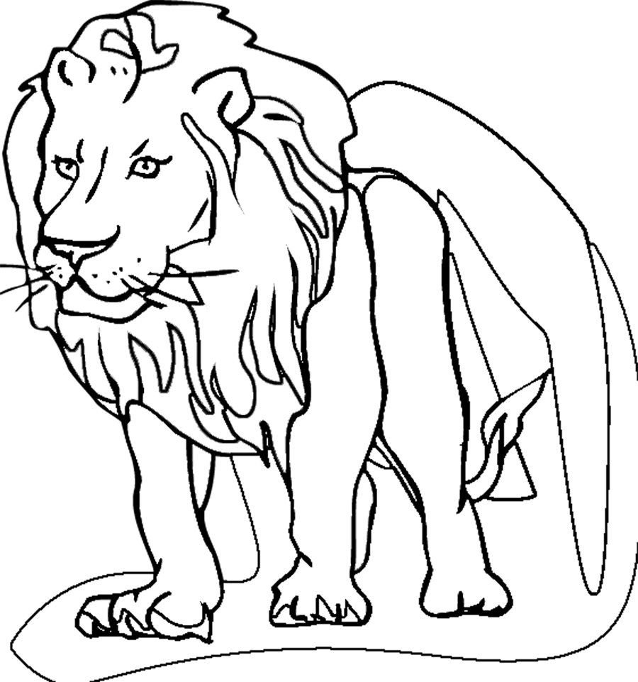 Coloring pages lion