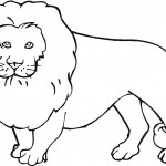 Lion Coloring Page Pictures