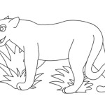 Lion Coloring Page for Kids Images