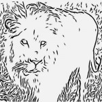 Lion Coloring Page for Kids Photo