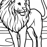 Lion Coloring Page for Kids Picture