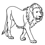 Lion Coloring Pages for Kids Image
