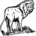 Lion Coloring Pages for Kids Images