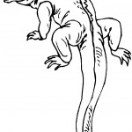 Lizard Coloring Page Photo