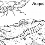 Lizard Coloring Pages Photos