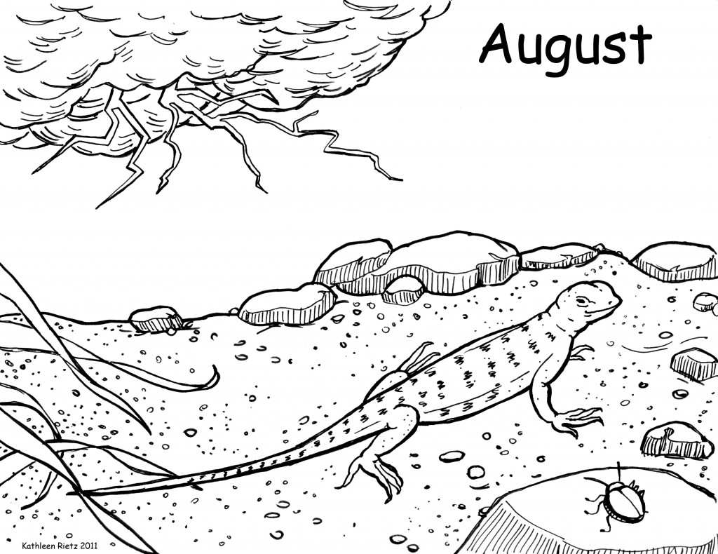 Grade 5 coloring pages - Free Printable Lizard Coloring Pages For Kids