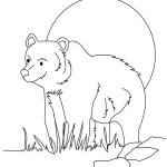 Panda Coloring Page Picture