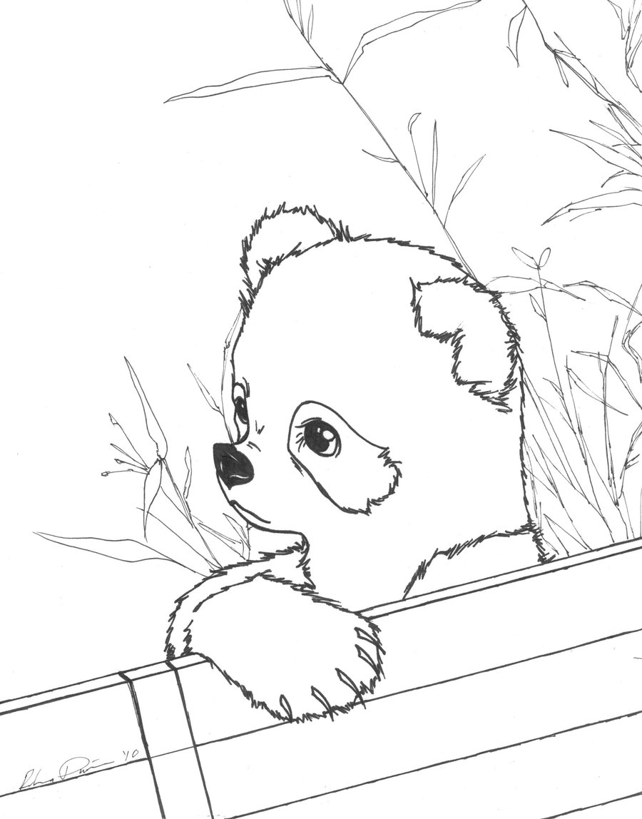 coloring pages panda free printable panda coloring pages for kids animal place