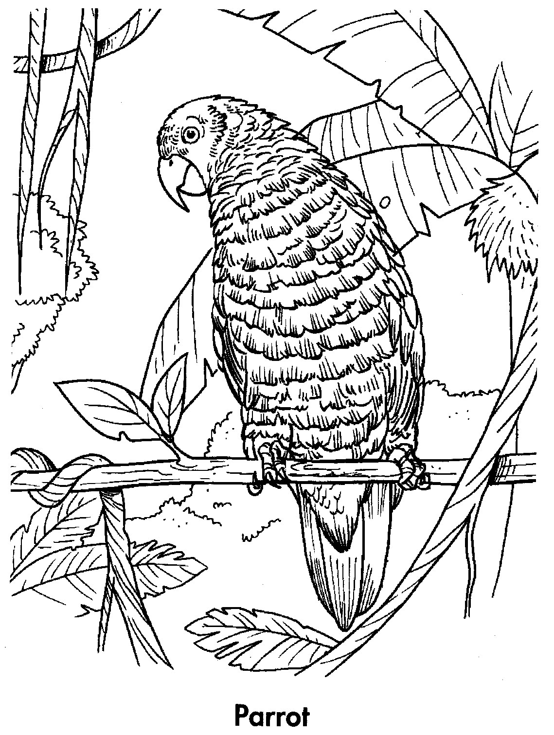 printable coloring book pages - photo#37