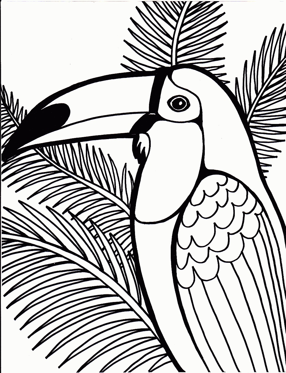 parrot coloring pages images