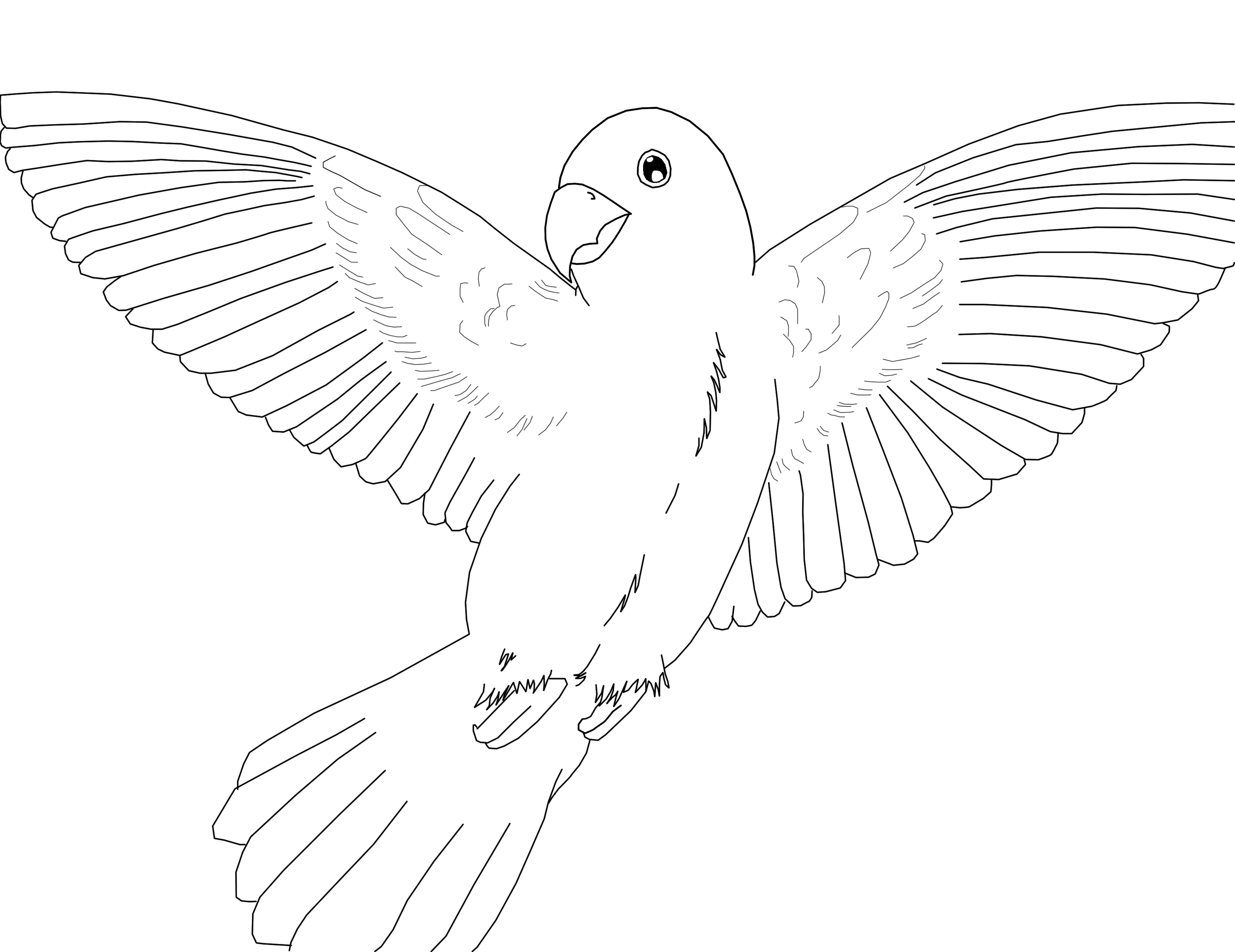 parrot coloring pages photo