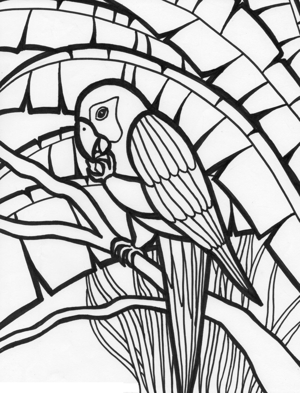 free printable parrot coloring pages - free printable parrot coloring pages for kids animal place