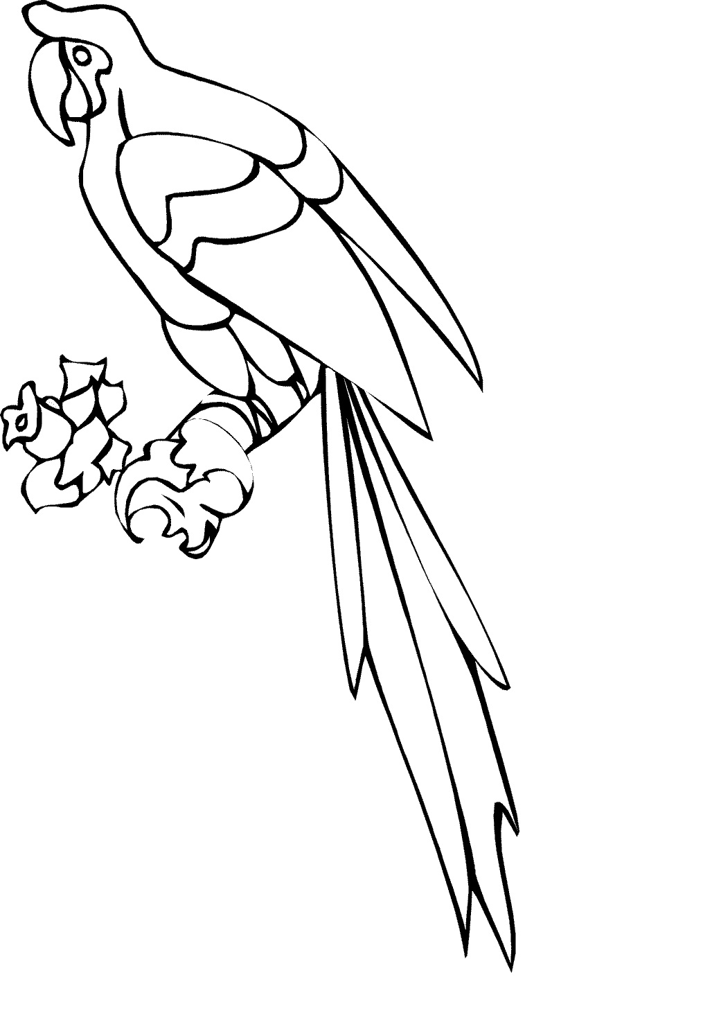 Free Printable Parrot Coloring Pages For Kids Animal Place
