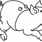 Pig Coloring Page Photos