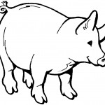 Pig Coloring Page for Kids Photo