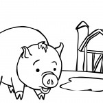 Pig Coloring Pages Picture